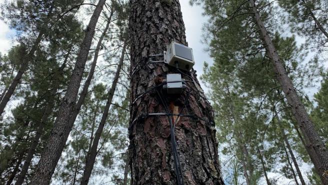 Un proyecto piloto instala en Jarandilla 12 nodos remotos para medir parámetros útiles para prevención de incendios