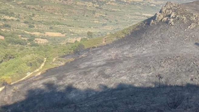 El Plan Infoex interviene 23 incendios forestales esta semana en Extremadura, que han afectado a 250 hectáreas