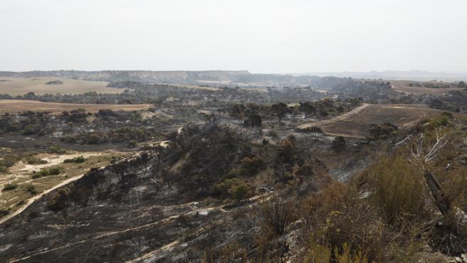 Los bomberos vigilan posibles rebrotes en el interior del área incendiada en el Vedado de Eguaras