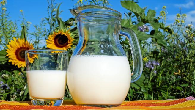 Un vaso de leche requiere de 200 litros de agua. Lejos de la carne de ternera, pero también muy por encima del centenar.