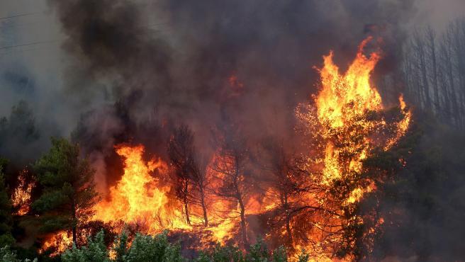 Incendio en Varybobi (Grecia) el 3 de agosto de 2021.