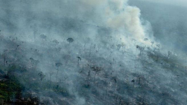 La deforestación de la Amazonia.