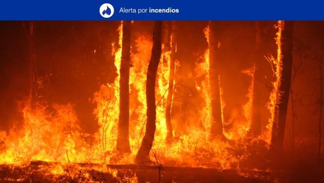 El Gobierno canario declara la alerta por riesgo de incendios en El Hierro, La Gomera, La Palma, Tenerife y Gran Canaria