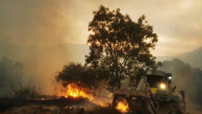 """Junta ve una """"evolución muy favorable"""" en el fuego de Ávila donde medios terrestres trabajarán toda la noche"""