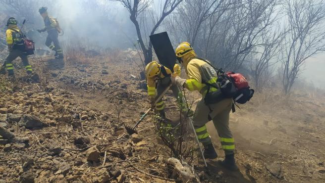 """Zapata admite que el incendio de La Palma está """"descontrolado"""""""