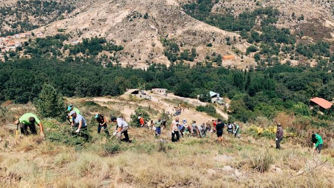 Los voluntarios trabajando en Navalacruz.