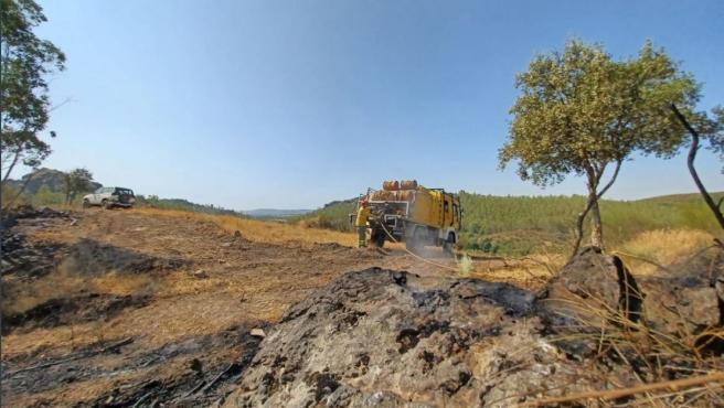 Los 35 incendios forestales en los que ha intervenido el Infoex esta semana han arrasado 960 hectáreas