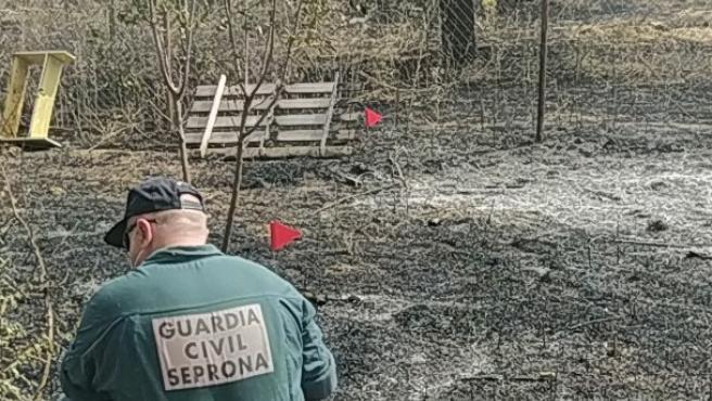 Investigan al presunto autor de un incendio forestal declarado en julio en Pozorrubio de Santiago (Cuenca)