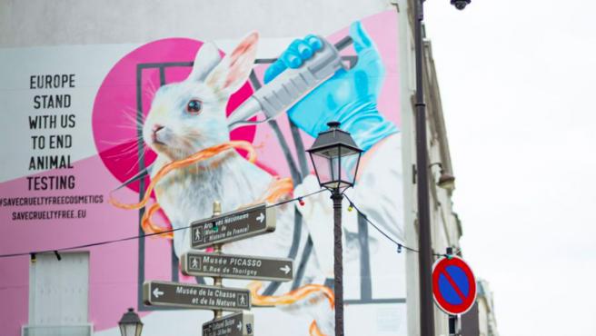 Campaña urbana contra la experimentación de animales.