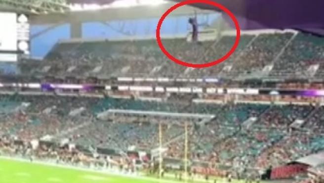 Salvan a un gato en un estadio de Florida utilizando una bandera para  amortiguar su caída desde la grada
