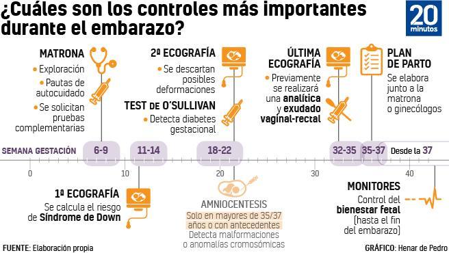 Cronología del embarazo.