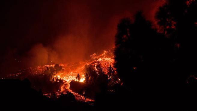 La lava del volcán Cumbre Vieja arrasa con todo a su paso y prende fuego a los árboles y vegetación que hay en sus laderas.