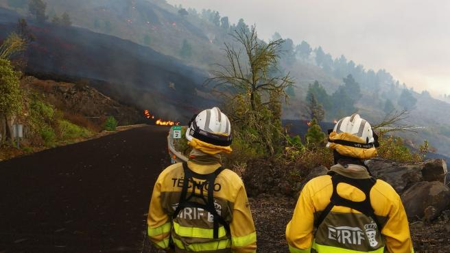 Los equipos de intervención y refuerzo en incendios forestales del Gobierno de Canarias.