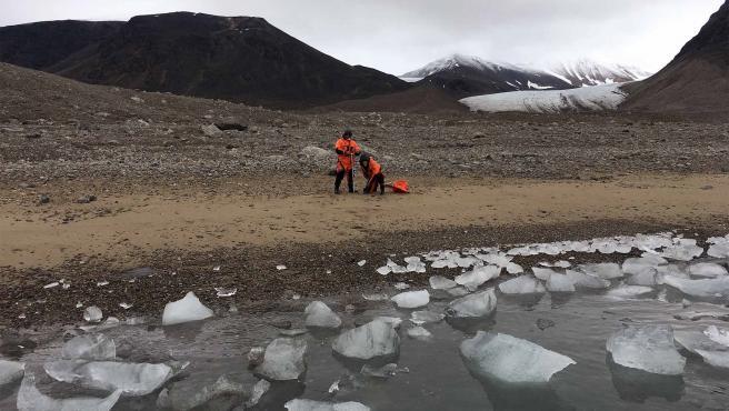 Científicos estudian comportamiento de algas en ecosistemas polares