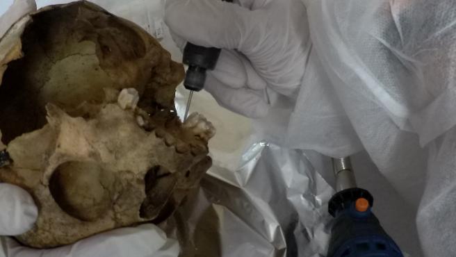 ULPGC y ULL estudiarán los restos de aborígenes canarios que se conservan en el Musée de l'Homme de París