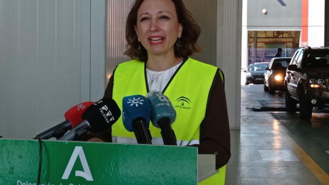 La Junta celebra que no haya lista de espera en las citas de la ITV en Málaga