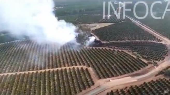 Incendios.- Extinguido el incendio forestal en el paraje El Palmitero cerca de Cantillana