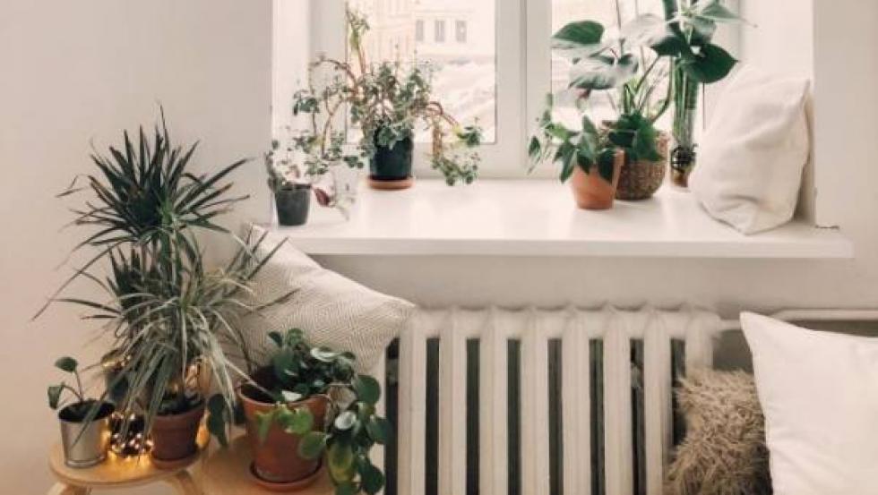 Regular la temperatura ambiente y llenar al máximo los electrodomésticos antes de usarlos son algunas de las claves para hacer de tu vivienda un hogar verde.