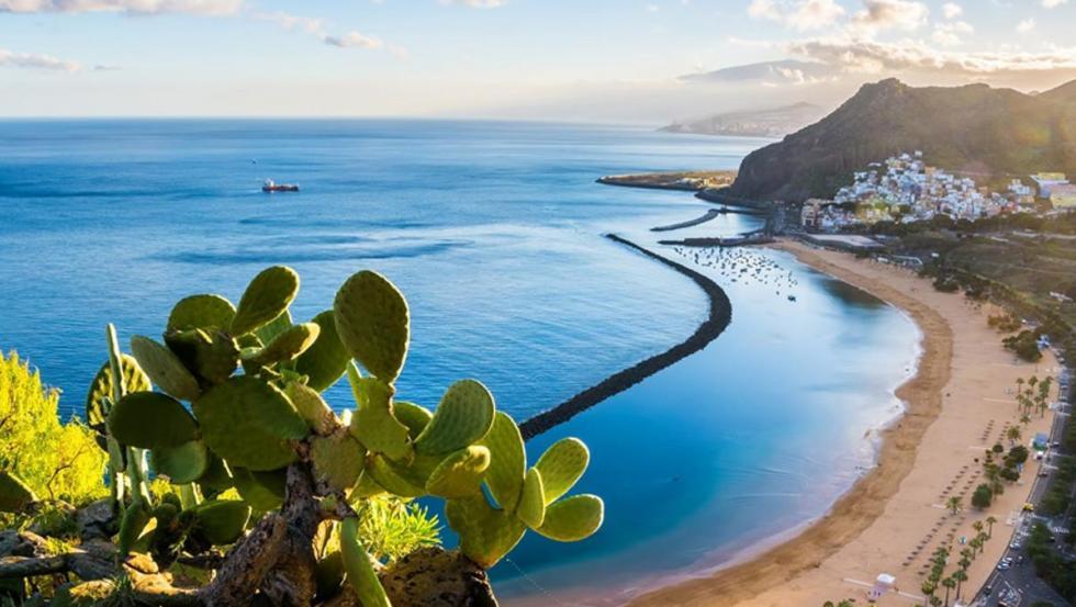 ¿Quieres que tu playa favorita esté libre de plásticos? Vota en #MiPlayaSinPlásticos.
