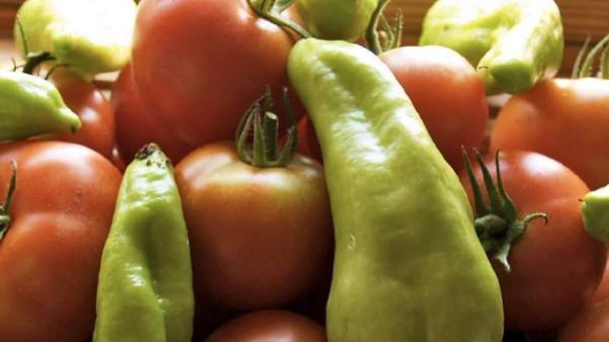 Los pimientos y tomates tienen nicotina, que podría proteger del desarrollo del párkinson