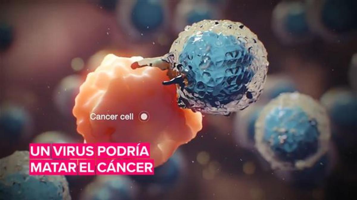 Crean un virus que podría matar el cáncer