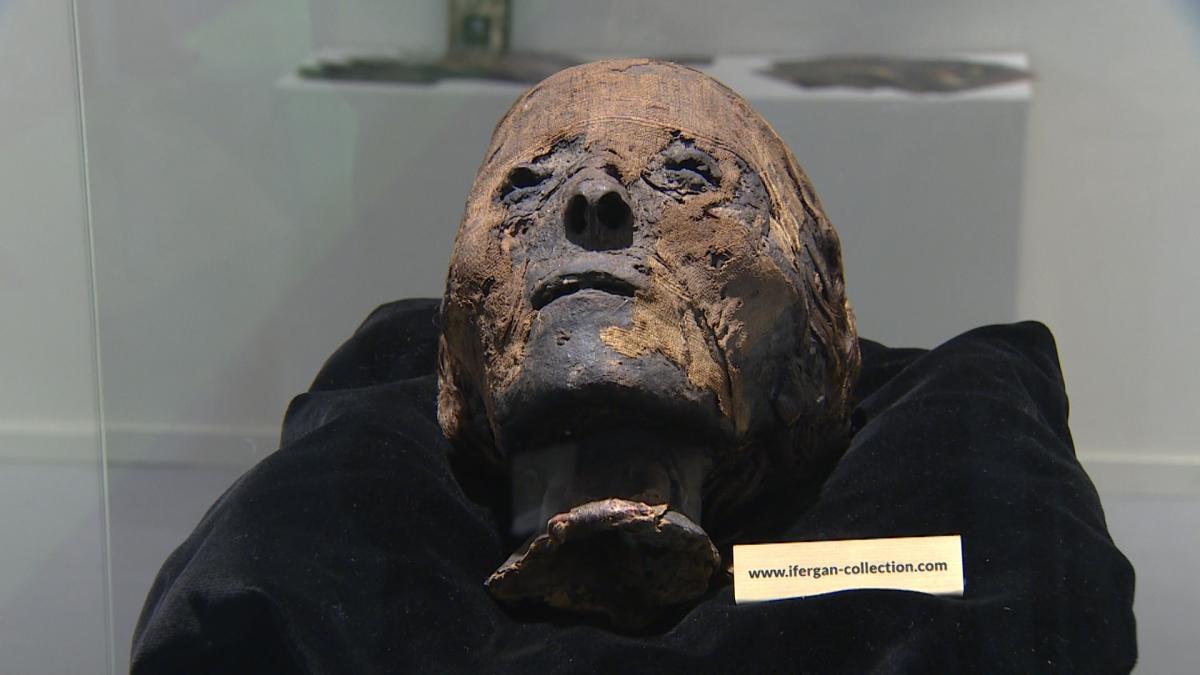 La cabeza de una momia es una de las protagonistas de Feriarte 2019