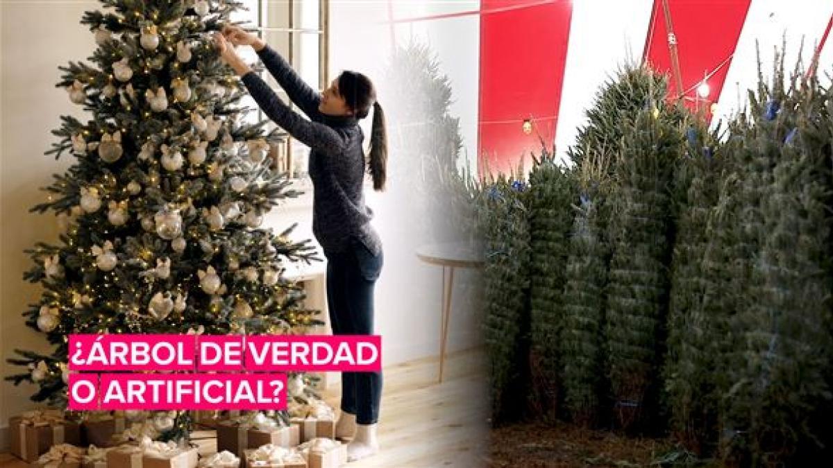 ¿Qué es mejor para el medio ambiente, el árbol de Navidad real o el artificial?