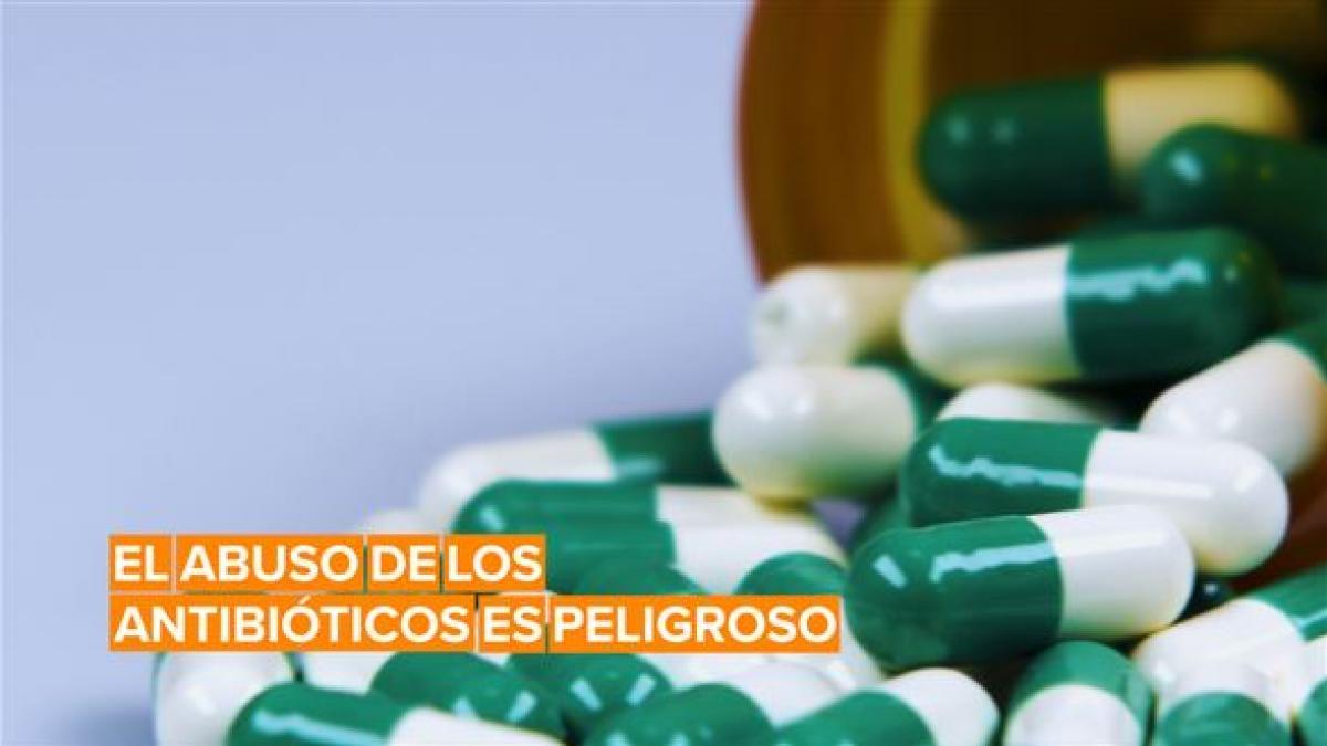El abuso de los antibióticos hace a las bacterias más resistentes
