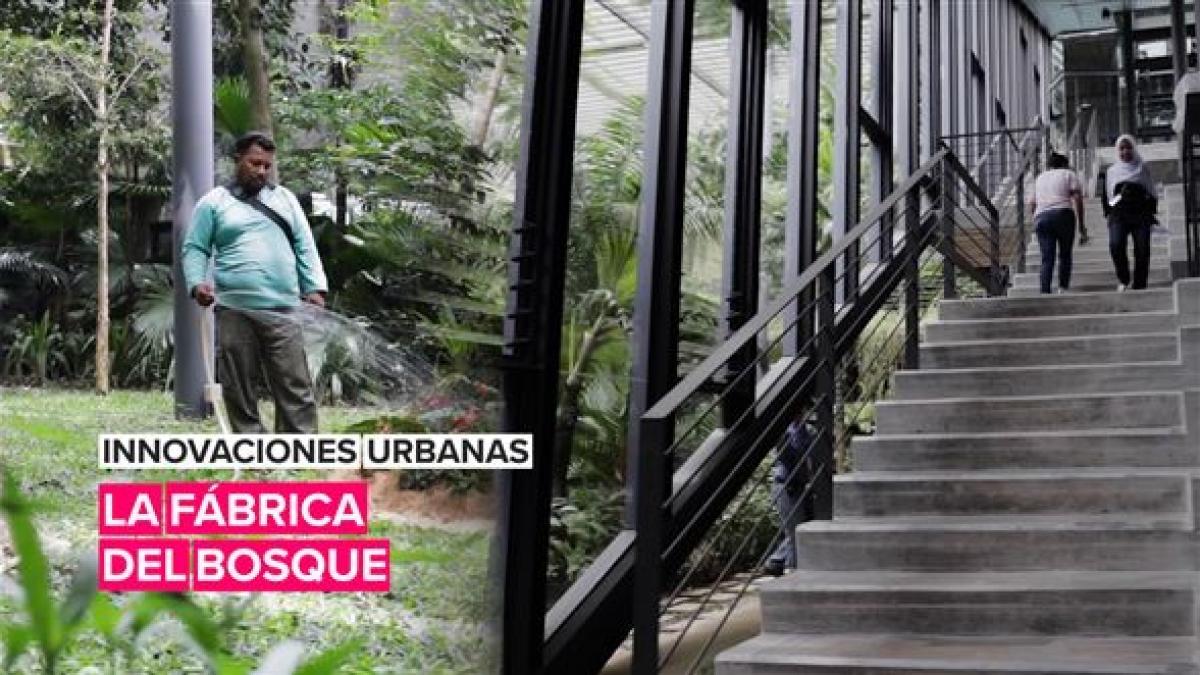 Innovaciones urbanas: La fábrica del bosque