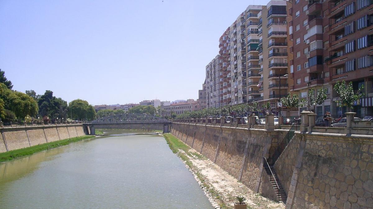 Siete detenidos en Murcia por robar y tirar al río Segura a un discapacitado