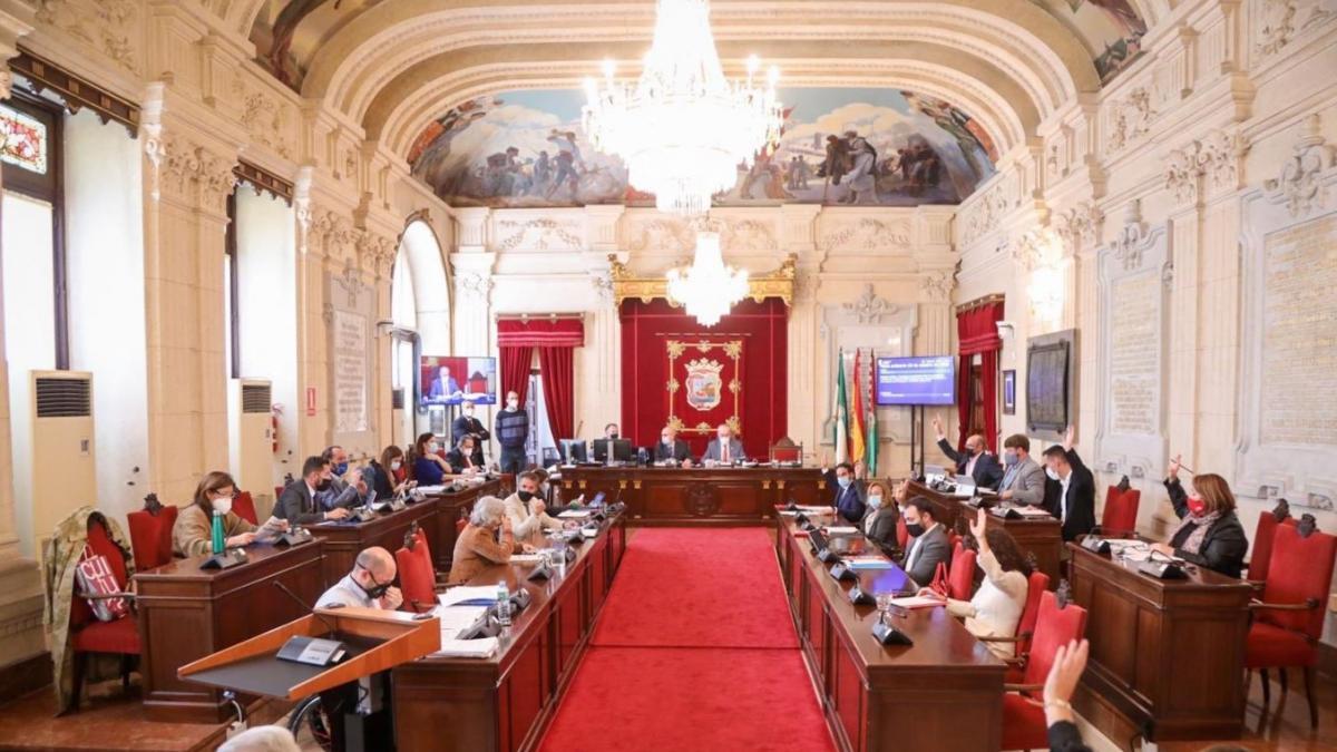 El Pleno aprueba por unanimidad pedir a Coca-Cola que reconsidere el cierre de su fábrica en Málaga 2