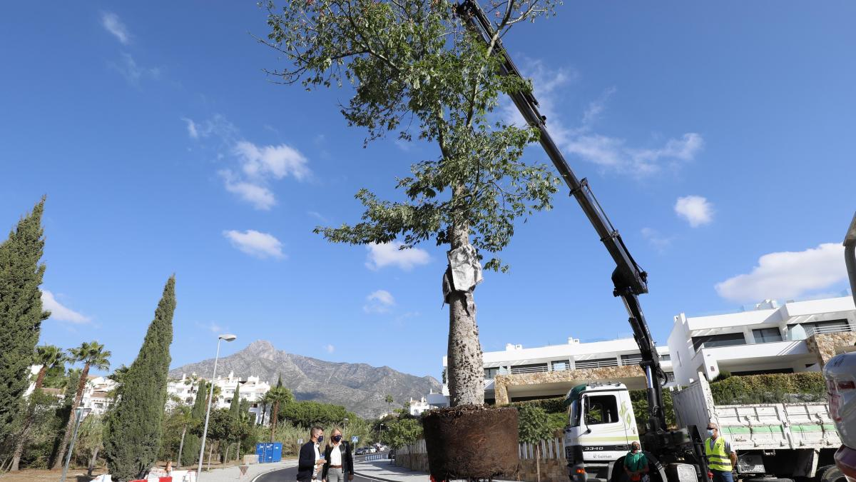 Marbella ejecuta obras dirigidas a dotar de mayor seguridad vial y revitalizar la zona de Lomas de Puente Romano 1