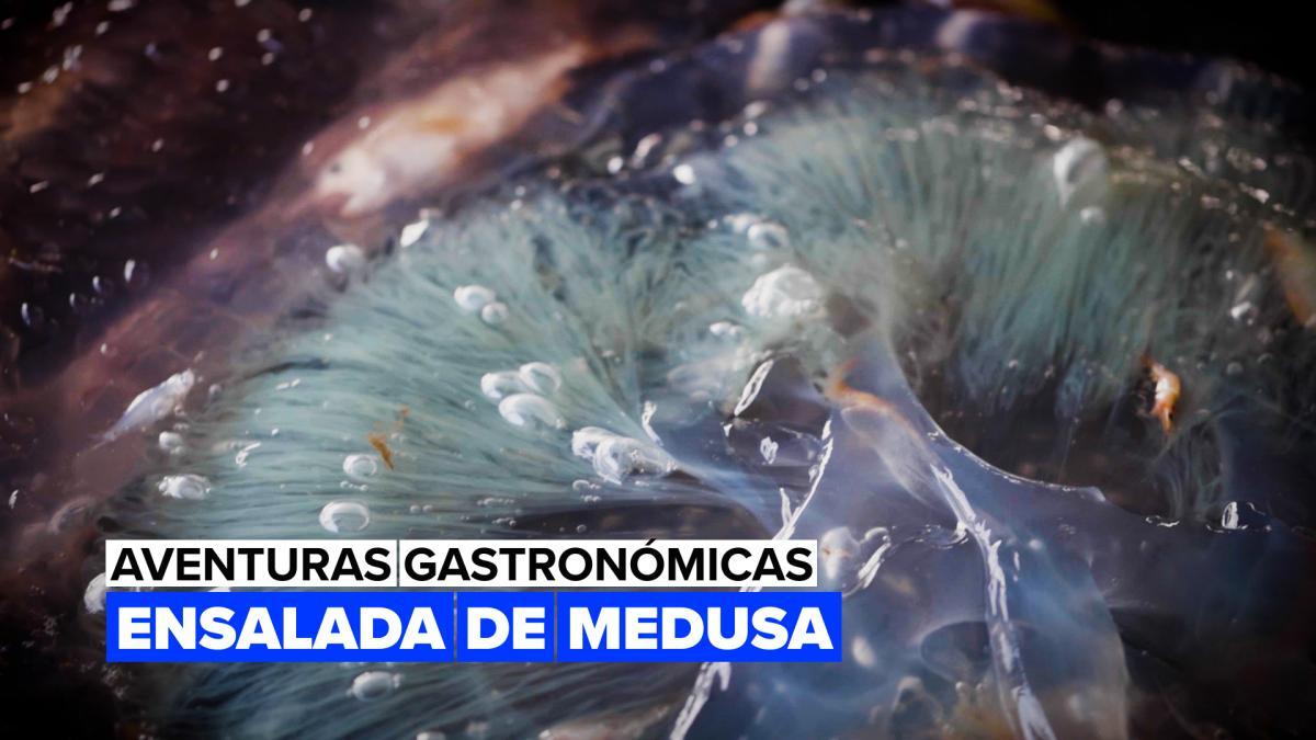 Medusas, un extraño manjar culinario