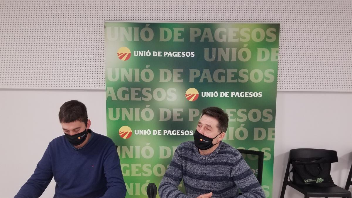 """Unió de Pagesos asegura que 2019 y 2020 han sido """"dos años buenos"""" para el porcino"""