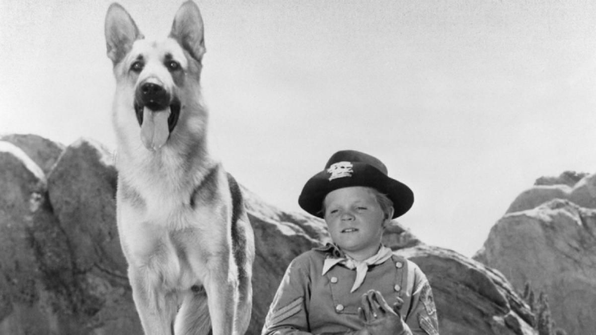 Muere Lee Aaker, el niño de 'Rin Tin Tin', a los 77 años
