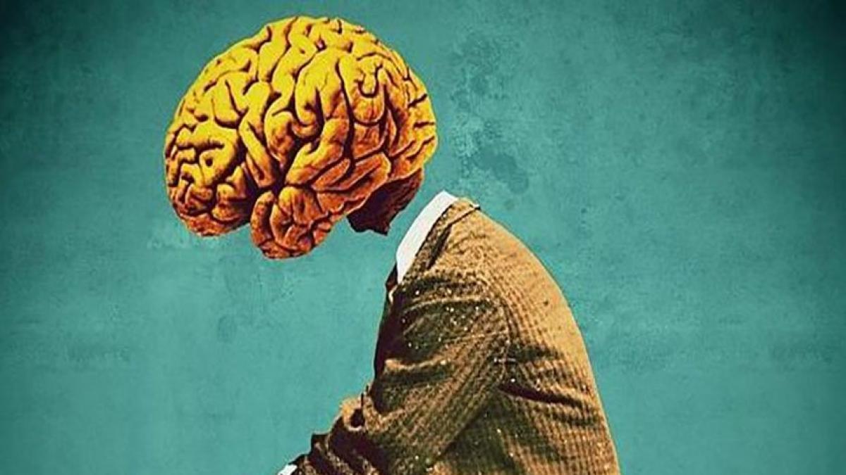 Por qué tu cerebro busca malas noticias: identifican áreas que se activan ante la elección de conocer sucesos negativos