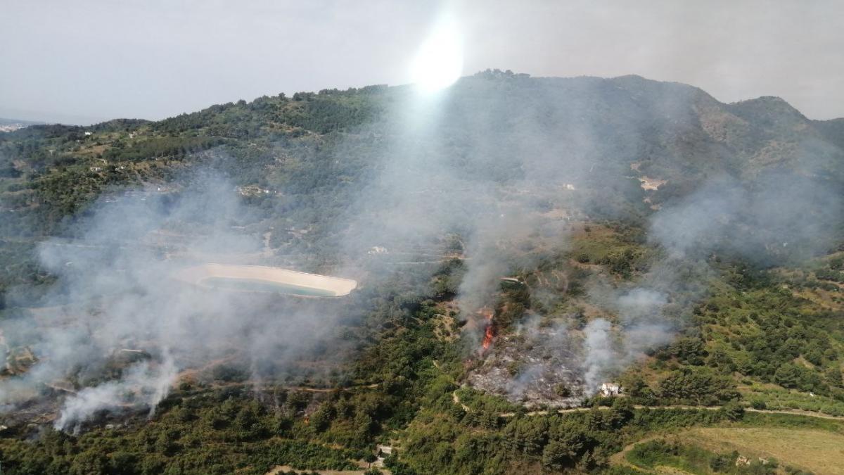 13 dotaciones de bomberos trabajan en un incendio de vegetación en la Selva del Camp
