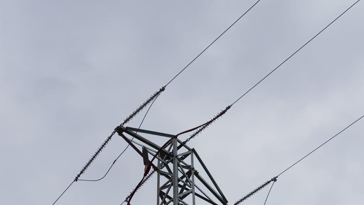 Endesa adecua una línea eléctrica en La Nou de Gaià (Tarragona) para proteger la avifauna