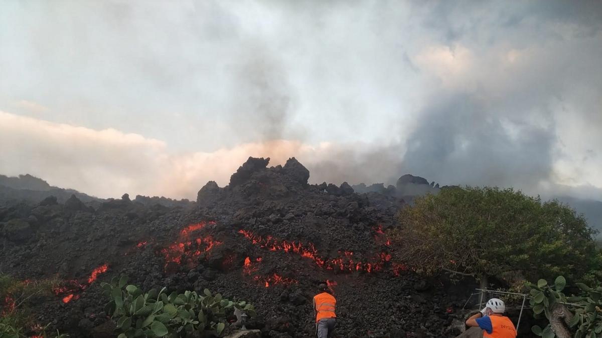 """La lava destroza las plantaciones de plátano en La Palma: """"La fruta está tan destruida que se h ..."""