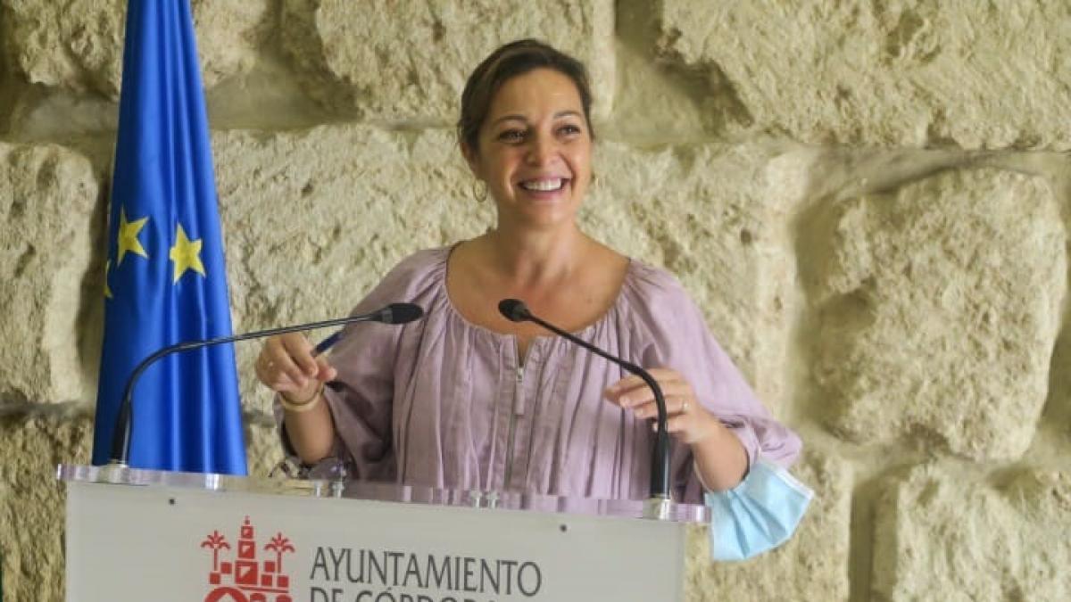 """El PSOE pedirá el apoyo del Pleno para que la Lista recoja """"la realidad de las viviendas irregulares"""""""