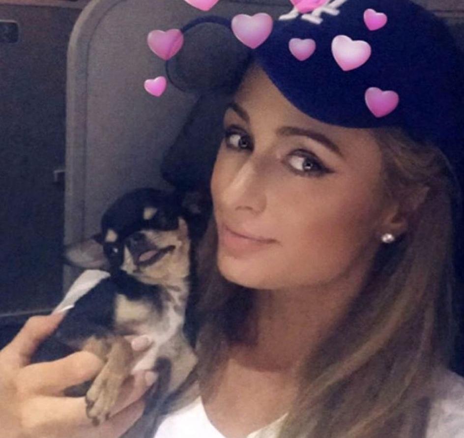 Amores Perros Escenas Hot https://www.20minutos.es/fotos/cultura/playmobil-y-otros